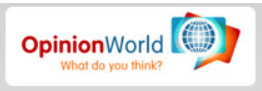 What is Opinion World Surveys About