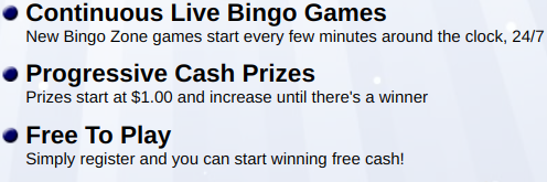 What is Bingo Zone About