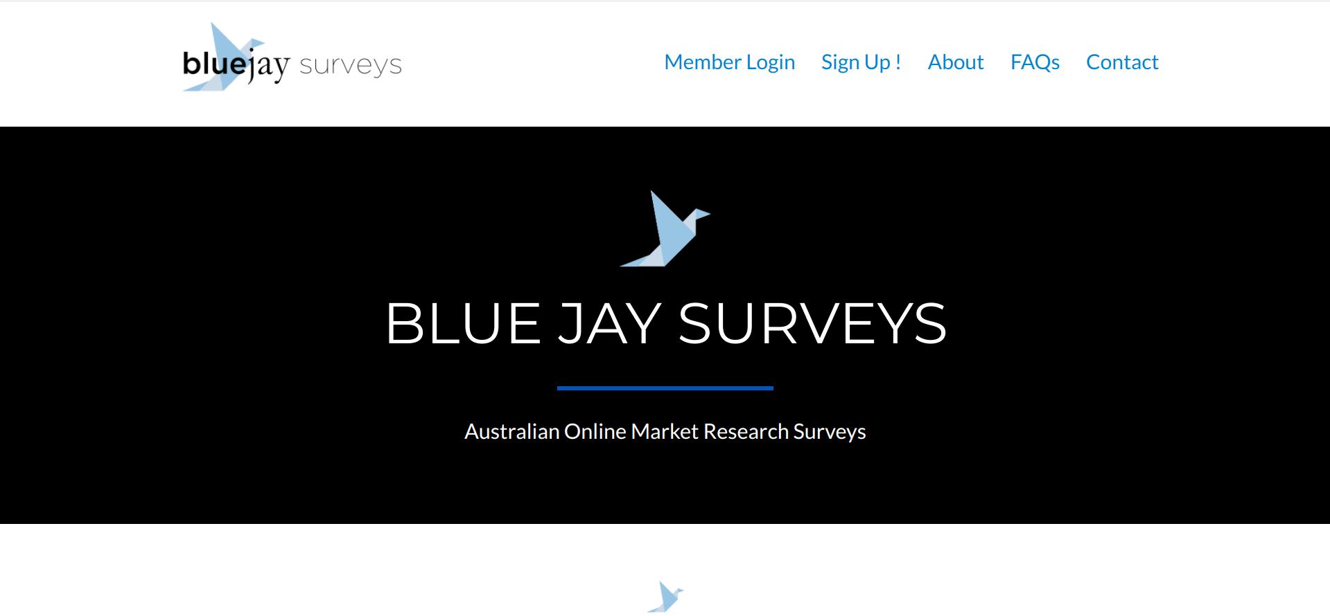 Is Blue Jay Surveys a Scam or Legit